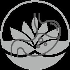 dibujo-de-estomago-con-logo-pylus-concepto-de-consulta-aparato-digestivo-en-centro-medico-pylus