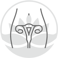 aparato-reproductor-femenino-con-logo-de-centro-medico-pylus-de-xativa