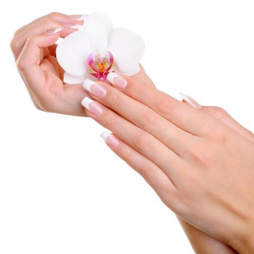 hermosa-mano-femenina-con-elegancia-dedos-y-manicura-francesa-sujeta-la-flor-blanca-concepto-belleza-manos-manicura-en-xativa-centro-estetico-pylus
