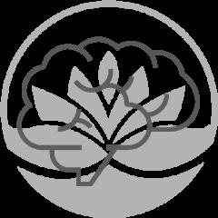 dibujo-de-cerebro-en-logo-pylus-concepto-de-psicologia-en-xativa-centro-medico-pylus